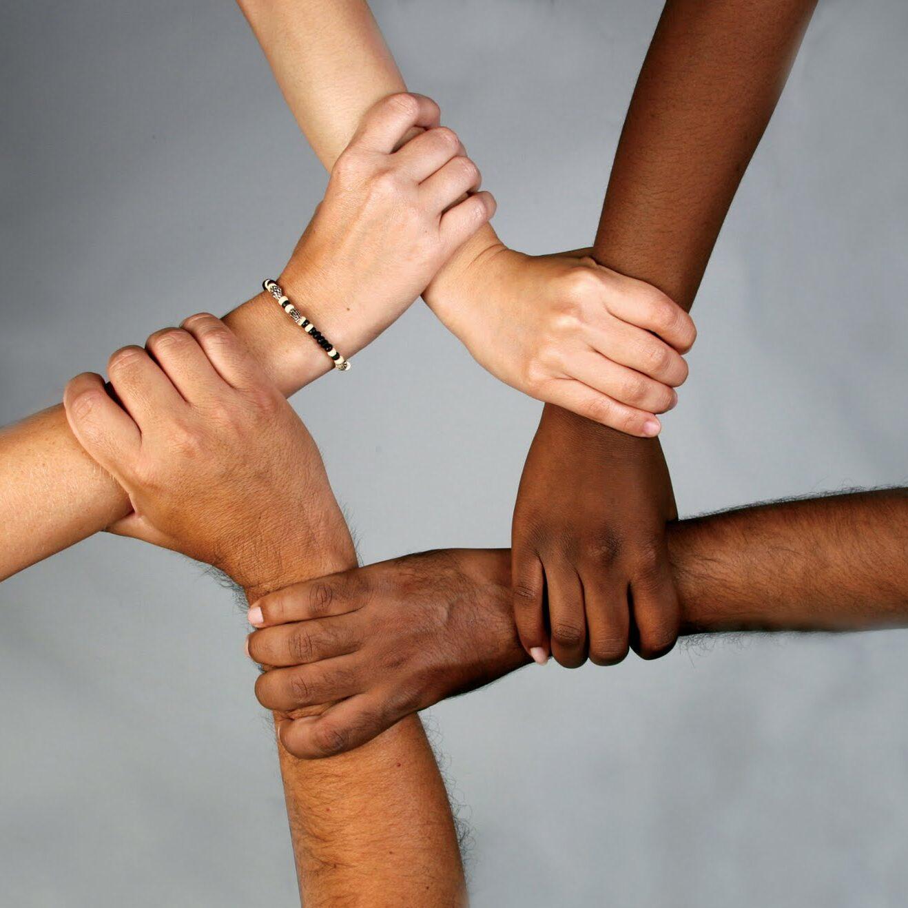 diversidade-3